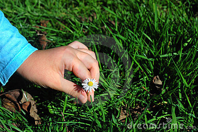 Young lady picking a flower