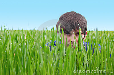 Young man hiding in green grass