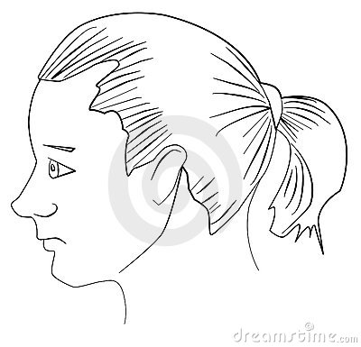 Young man with ponytail