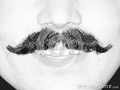 Young Man's Moustache