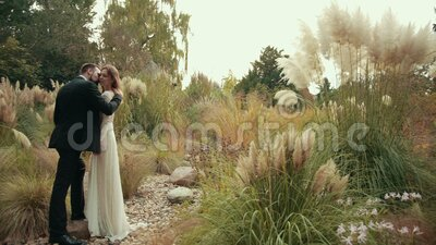 Young married couple groom with beard and black suit hugs their bride kisses her. Young married couple groom with beard and black suit hugs their bride in white stock video