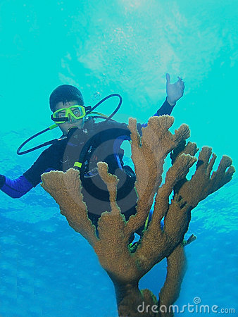 Young scuba diver and fire coral