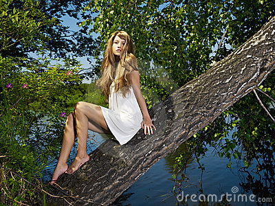 Young Sensual Lady On Tree Royalty Free Stock Photo - Image: 20094895
