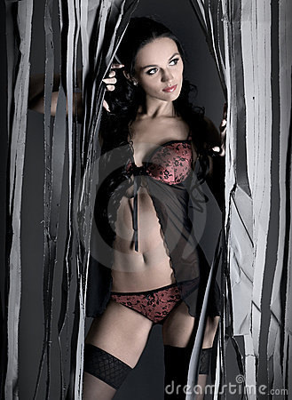 A young and sexy lady in erotic lingerie