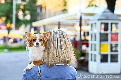 Young woman with chihuahua