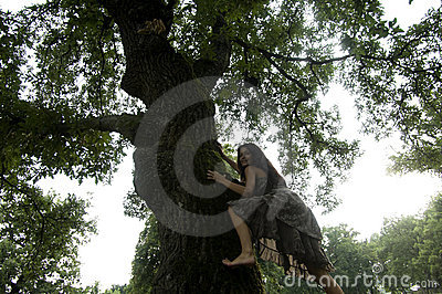 Young woman climbing a tree