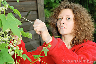 Young woman cutting climber plant
