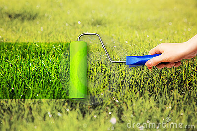 Young woman painting on grass