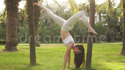 young woman practicing yoga in park downward facing tree