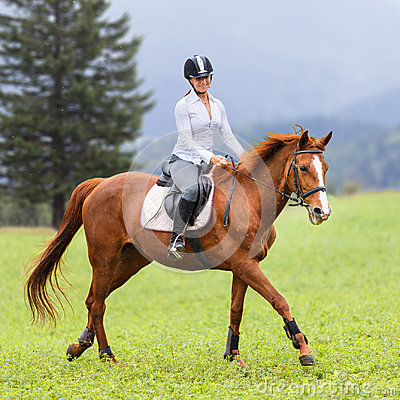 Free Young Woman Riding Sorrel Horse On Mountain Meadow Royalty Free Stock Images - 97549739