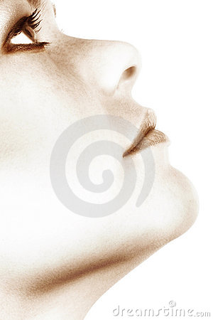 Free Young Woman S Face Royalty Free Stock Photos - 878718