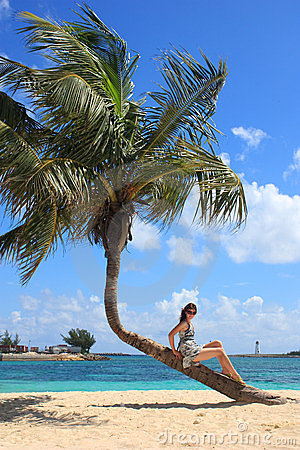 Young woman sitting on a bending palm tree