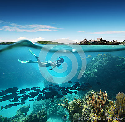 Free Young Woman Snorkeling In The Coral Reef In The Tropical Sea Stock Photos - 29204993