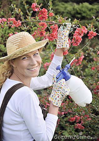 Free Young Woman Spraying Tree Stock Images - 11051104