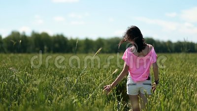 Young woman walking ona green wheat field stock footage