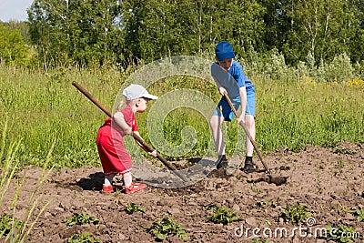 Youthful farmers.