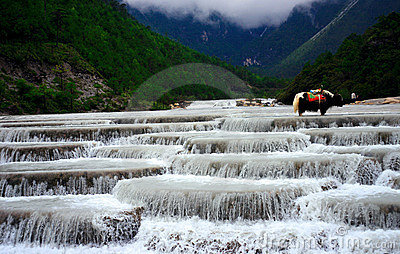 Yulong Snow mountain-white river