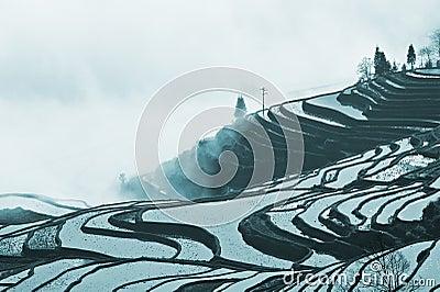 Yunnan, China, Yuanyangtitian,