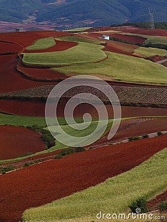 Yunnan red soil dry