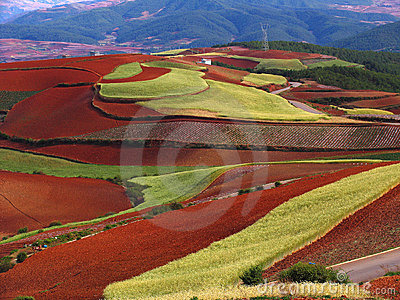 Yunnan red soil dry