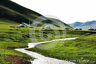 Yurts in Mulan Paddock
