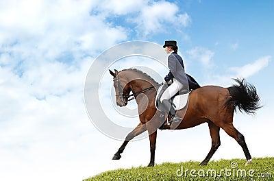 Z dressage konia equestriat kobieta
