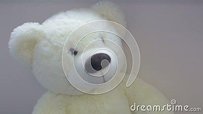 Zabawkarski niedźwiedź od pediatria działu zbiory wideo
