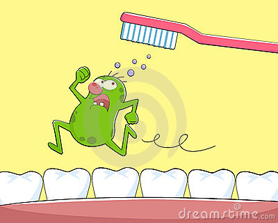 Zahnmikrobe