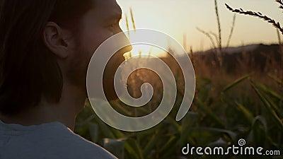 Zakończenie up przystojny mężczyzna z brodą z natura krajobrazem w zmierzchu, wschodzie słońca/ zbiory