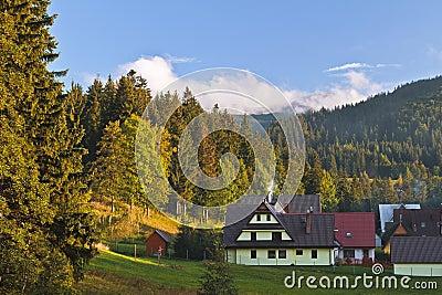 Zakopane town and landscape
