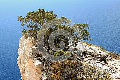 Zakynthos headland