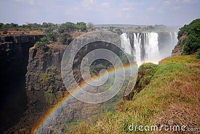 The Zambezi river 5