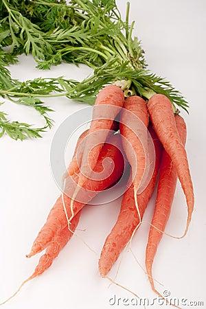 Zanahorias de la viga