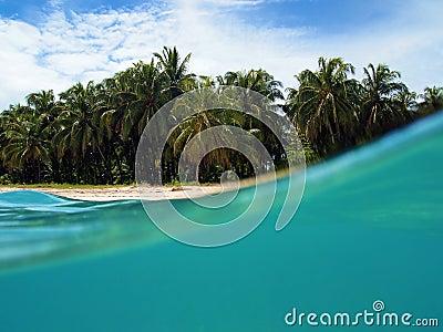 Zapatilla beach