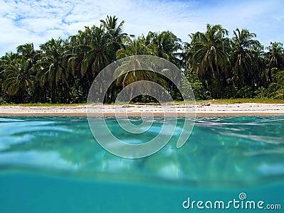 Zapatilla island beach