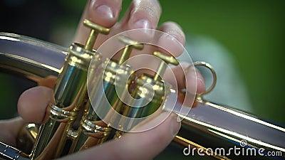 Zbliżenie palców muzyka, który gra trąbkę zbiory wideo