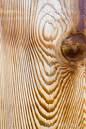 Zbożowy cedru drewna