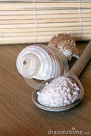 Zdrój sól