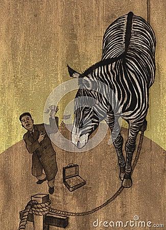Zebra In Circus