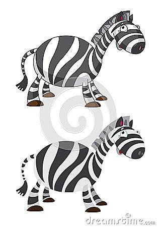 Zebra divertente