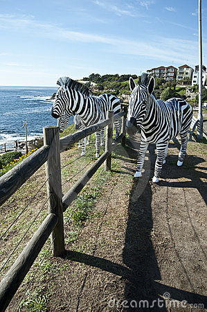Free Zebra Sculptures By The Sea Bondi Beach Royalty Free Stock Photo - 21963615