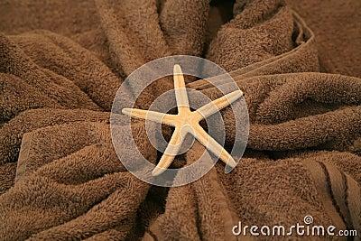Zeester die op een handdoek liggen