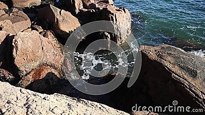 Zeevaart aan de kust van Rocky stock video