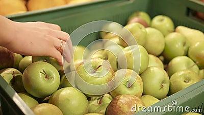 Zeitspanne von Frau ` s übergibt das Wählen von grünen Äpfeln stock footage