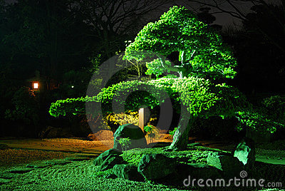 νύχτα κήπων zen