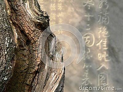 Zen abstract image