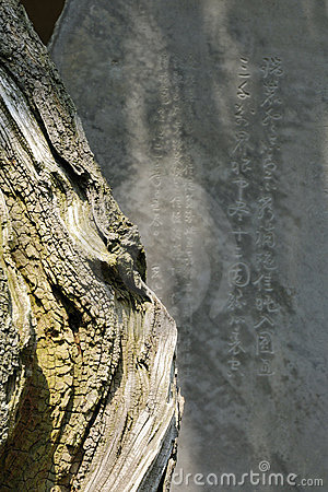Zen abstract image vertical