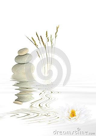 Free Zen Balance Stock Photos - 6441333