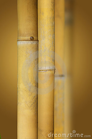 Free Zen Bamboo Stock Photography - 18920862