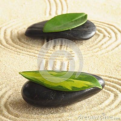 Zen harmoney